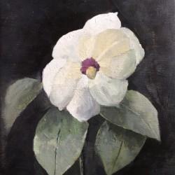 'Magnolia sieboldii'  24x18 cm, akryl på lerret, 2014, Kr 1500,-
