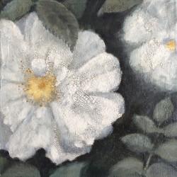 'Stanwell Perpetual rose', 20 x 20 cm, olje (og krakileringspasta) på lerret, 2015.