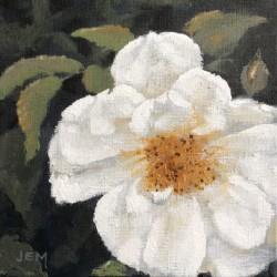 'Lykkefund rose', 15 x 15 cm, akryl på maleplate, 2015.