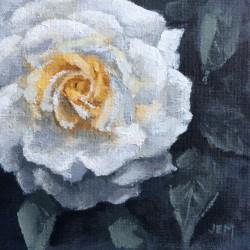 'Stockholm rose', 15 x 15 cm, akryl på maleplate, 2015.