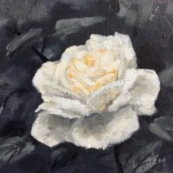 'Lions rose', 15 x 15 cm, akryl på maleplate, 2015, Kr 800,-