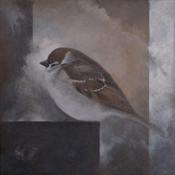 'Pilfink', 65 x 65 cm, akryl på lerret, 2010, Kr 4500,-
